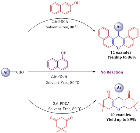 2,6-Pyridinedicarboxylic acid as an efficient and mild organocatalyst for the one-pot synthesis of xanthene derivative