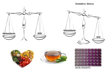 Oxidative stress and plant deriving antioxidants
