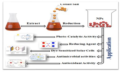 Mechanistic Approaches and Current Trends in the Green Synthesis of Cobalt Oxide Nanoparticles and their Applications
