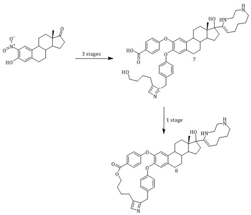 Design and synthesis of two steroid derivatives from 2-nitroestrone and theoretical evaluation of their interaction with BRCA-1