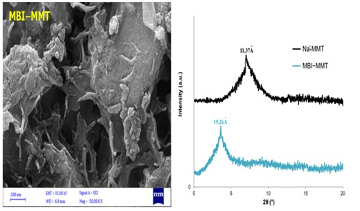 Modification of montmorillonite clay with 2-mercaptobenzimidazole and investigation of their antimicrobial properties