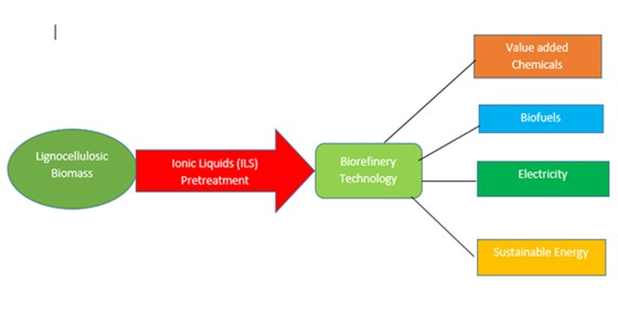 Ionic liquids (ILs): advances in biorefinery for the efficient conversion of lignocellulosic biomass